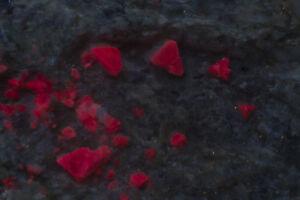 "JH16499 Huge 0.3"" Zunyite Crystals and Apatite Specimen, Big Bertha Mine, AZ"