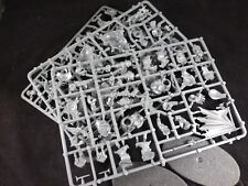 AoS Beastclaw Raiders / Ogre Kingdoms Mournfang Cavalry on Plastic Frame