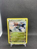 Druddigon 83/114 XY Steam Siege Non Holo Rare Pokemon Card TCG NM