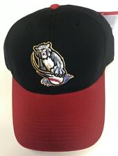 NEW Vintage Sacramento River Cats Minor League Baseball Cap