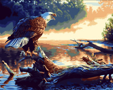 """DIY Paint Eagle at dusk 16""""x20"""" By Number Kit On Canvas Frame Painted Craft 1158"""