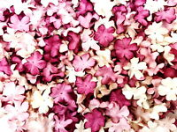 Blossom Paper Flowers 20 mm. Mixed Tone Mauve & White color Mulberry Awesome