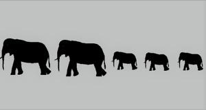 Elephant Vinyl Sticker / kids room decor wallart decal /Nursery/ animal