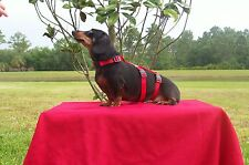 Harness For Dachshunds and Small Breeds  Cats too