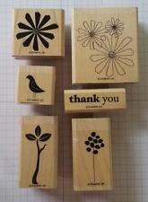 Stampin' Up! SPRING SOLITUDE Flower Bird Sprout Thank You
