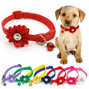 Buckle Puppy Cat Accessories Necklace Dog Collar Bell Pendant Cat Collars