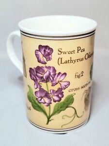 Crown Trent Fine Bone China Limited Coffee Tea Mug - Sweet Pea Pansy Design