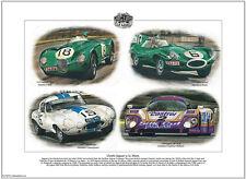 Clásico Jaguar en Le Mans Fine Art Print tamaño A3-C-type D-type E-type xjr-9lm