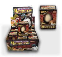 12 Hatching Dinosaur Eggs Hatch-em Eggs Dinosaur Hatching Egg Growing Dinosaur