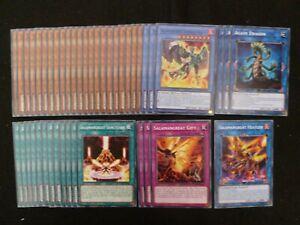 YU-GI-OH 44 CARD SALAMANGREAT DECK  *READY TO PLAY*