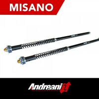 ANDREANI MISANO FORK ADJUSTABLE CARTRIDGE KIT HONDA CBR 500 2013