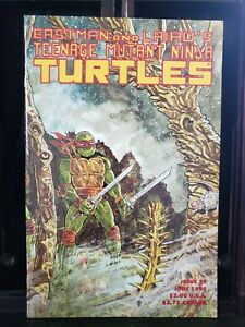 Teenage Mutant Ninja Turtles #37 Mirage