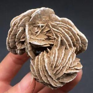 Natural Desert Rose Selenite Crystal Mineral Specimen Sand Rock Gypsum Flower1Pc