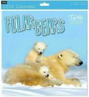 Traditional 2020 Square Wall Calendar New Year  Month View Xmas POLAR BEARS