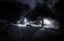 Enmarcado impresión Bosque gótico escalofriante nevadas durante la noche (Art) de imágenes de la Luna Park