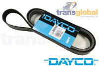 Land Rover Discovery 2 TD5 Drive Fan Belt with AC & ACE - OEM DAYCO - PQS101510