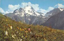 Printemps in alta montagne - le Alpi in colori naturali