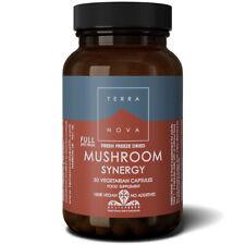 Terranova Mushroom Synergy Full Spectrum 50 Vegetarian Capsules