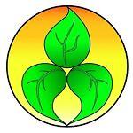 bushmanseeds