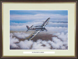"""Hawker Typhoon picture """"In Peaceful Skies"""" by Brian Robinson - NGN37"""