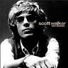 Scott Walker : The Collection CD