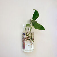 Rectangle Wall Hanging Glass Flower Vase Bottle Hydroponic Terrarium Container