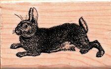 Stamp Cabana ~ RABBIT ~ Wood Mounted Rubber Stamp Spring Animals Nature