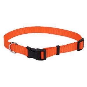 """Coastal Pet Remington Orange Hunting Tuff Water resist Dog Collar 18"""" To 26"""" USA"""