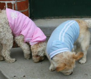 Dog hoodie shirt 25cm small dogs cotton blue with white trim NEW