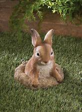lifelike baby Bunny Rabbit outdoor yard garden lawn art decor statue sculpture