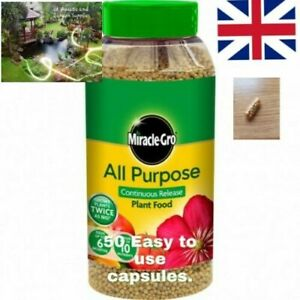 50 x Fast Growing Miracle Gro All Purpose Slow Release Plant Food CAPSULES. AAA