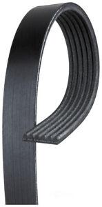 Serpentine Belt  ACDelco Professional  6K612