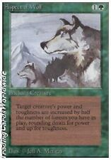 Aspect of Wolf // ex // Unlimited // Engl. // Magic the Gathering