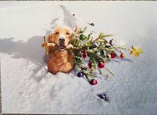 Avanti Greeting Card Merry Christmas Dog Christmas Tree Holidays