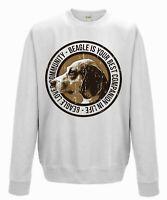 Dog Beagle - jumper