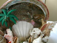 VINTAGE HANDMADE ABALONE SHELL AND CORAL CONVERSATION PIECE