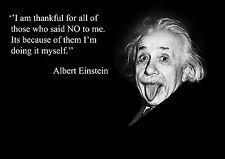 ALBERT EINSTEIN INSPIRATIONAL / MOTIVATIONAL POSTER