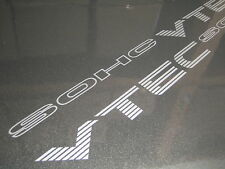 X2 HONDA CIVIC sact VTEC stickers / autocollants-FREE P&P