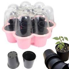 8 Holes Vegetable Flower Seeds Growing Box Garden Plant Seedling Tray Tool