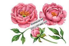 STICKER...Wall / Pink Flowers  /Mirror / Window/ Furniture / Wall Art