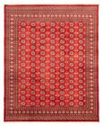 """Vintage Hand-Knotted Carpet 8'2"""" x 10'0"""" Traditional Oriental Wool Area Rug"""