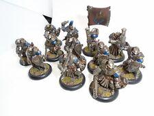 Warmachine Painted Cygnar Sword Knights + Sword Knight Officer & Standard Unit