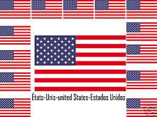 Assortiment lot 25 autocollants Vinyle stickers drapeau États-Unis-united-States