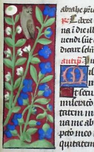 Very unusual cute colorful border painting Owl among colorful flowers,ca.1470