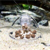 Plastic Plants Planarian Pest Catch Box Leech Environment Clean Tool Fish Tank