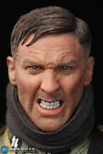 """DiD """"Egon"""" WW2 German Das Reich Panzer Gunner Head Only 1/6 Scale"""