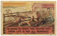 1946 VTG Postcard Going to Teach this Fellow that Farm Life is Not ALL Romance