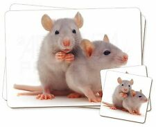 Silver Blue Rats Twin 2x Placemats+2x Coasters Set in Gift Box, RAT-1PC