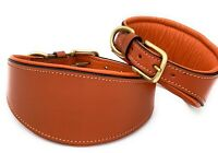 WHIPPET GREYHOUND LEATHER DOG COLLAR SOFT LUXURY PADDED AND LINED LURCHER STRONG
