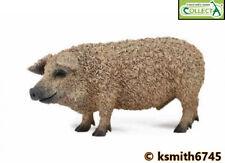 Collecta hongrois cochon solide Jouet en plastique Ferme Pet Animal cochon sanglier Hog New 💥